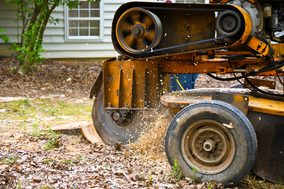 Tree Service St Louis - Stump grinding machine removing a stump in St Charles MO